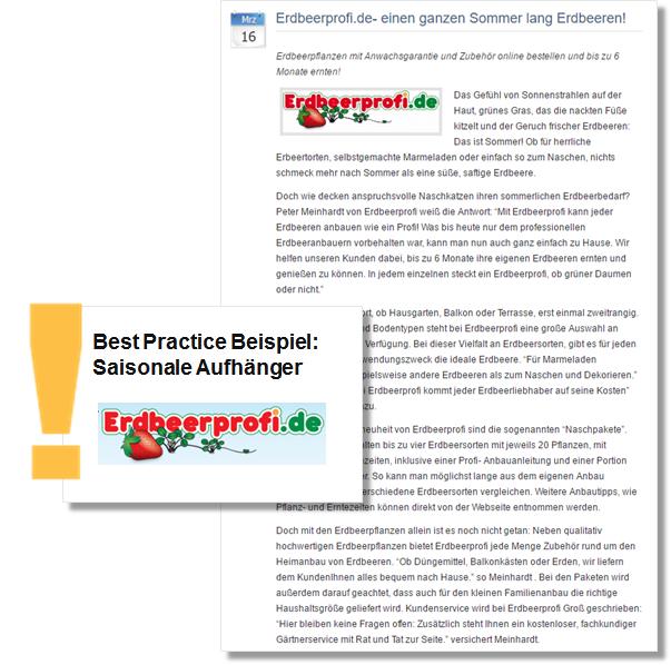Sommer PR Pressemitteilung Erdbeerprofi mitTipps zum Anbau und Pflege von Erdbeerpflanzen