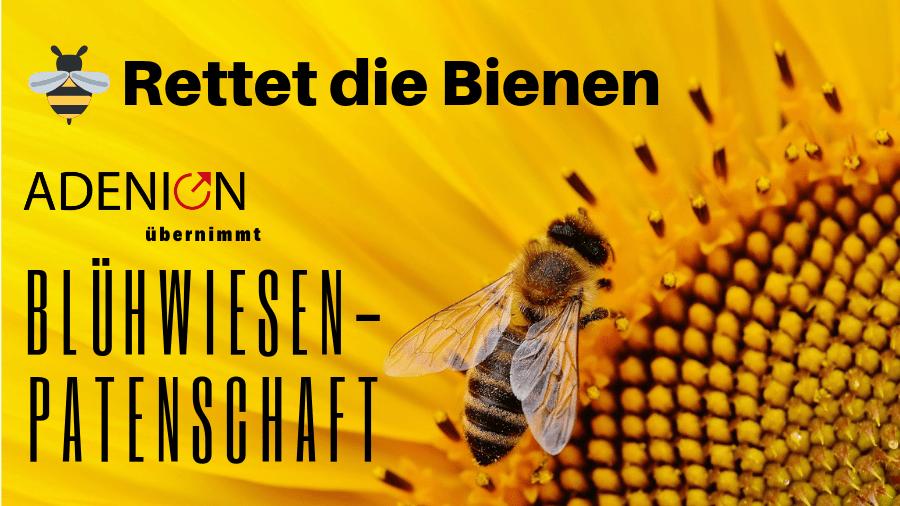 Ein Beispiel aud der Online-PR: Adenion übernimmt Blühwiesen-Patenschaft