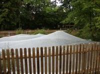 Herbstputz für den Gartenteich mit Effektiven Mikroorganismen