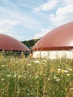 showimage Zwei Jahre Praxis zeigen: Biogas mit Kleegras rundum nachhaltig