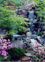Anderson Japanese Gardens in Rockford: Japanische Gartenkultur vom Feinsten
