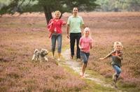 Auf den Hund gekommen: Bei den Doggy Dog Days im niederländischen Landal Landgoed' t Loo stehen die Vierbeiner im Rampenlicht