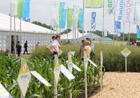 showimage EURALIS Saaten mit tropischem Flair auf den DLG-Feldtagen 2014!