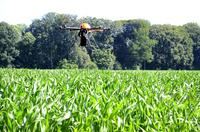 AGRAVIS Raiffeisen AG: Oktokopter im Einsatz gegen Maiszünsler