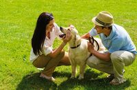 LINDA Apotheken beraten zur Tiergesundheit