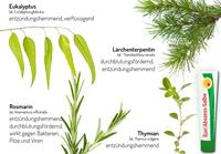 Natürliche Therapie oder Antibiotika: Natürliche Behandlung im Vorteil!