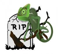 494 Menschen sterben durch das Chamäleon der Gifte:   Die beste Lebensversicherung wäre ein Kohlenmonoxid Melder!