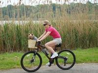 Bike-Domains: Start im November