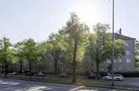 Berliner Investor - MÄHREN GRUPPE - erweitert erneut Portfolio