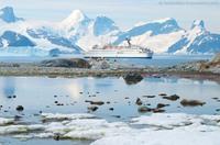 MS Delphin günstige Kreuzfahrten in die Antarktis