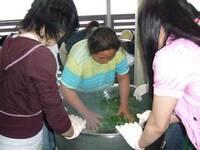 Grüner Tee aus Hadong in Süd-Korea - Einer der besten Grüntees der Welt
