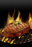 Grillen - Kulinarik der Spitzenklasse