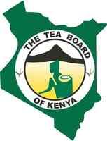 Tee der Superlative: Kenia auch 2013 größter Exporteur