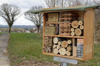 Aktiver Bienen-Schutz ist Herzensangelegenheit für den OASIS-Versand