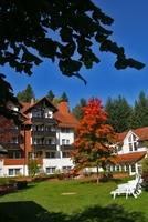 Herbstlicher Wellness- und Wanderurlaub in Braunlage