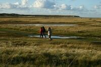 Wanderspaß im Winter: Insel Texel öffnet die