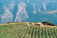 Hohe Qualität im Norden von Hellas
