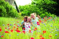Blumige Zeiten: Landal-Ferienparks als Ausgangspunkt für Besuche deutscher Landesgartenschauen und des holländischen Blumenparks Keukenhof