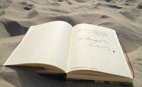 Kreative Schreibreise an der lykischen Küste