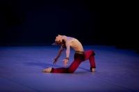 Startänzer Dmitry Semionov bei den Gluck-Opern-Festspielen