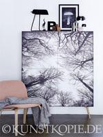 Kunst mit Wow-Effekt! Bilderdruck direkt auf Flächen und Türen