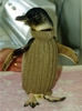 2 Rechts -2 Links: Strick-Pullover für die Frackträger von Phillip Island in Australien