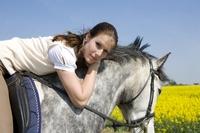 Die Pferdehaftpflicht bietet Schutz bei großen und kleinen Pannen