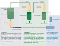 Hochwertige und reine biologische  Öle und Extrakte durch CO2-Extraktion