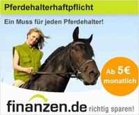 Pferdehalter müssen eine Haftpflichtversicherung haben. 24Finanzen.de informiert