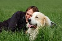 Hundehaftpflichtversicherung: Wenn der Hund sich selbstständig macht...