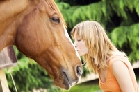 Mit der Pferdeversicherung fest im Sattel