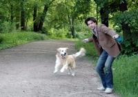 Unverzichtbar: die Hundehaftpflichtversicherung für Bello und Herrchen