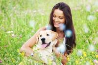 Hundeoperationsversicherung: schnelle Hilfe für den Vierbeiner