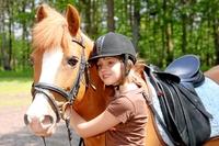 Pferde Kombi Vollschutz - umfassender können sich Pferdefreunde nicht absichern