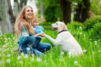 Die Hundeversicherung schützt Herrchen und Frauchen vor Schadensersatzansprüchen