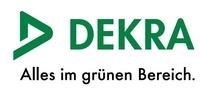 DEKRA: Berliner Kinderspielplätze immer gefährlicher