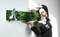 styleGREEN Pflanzenbilder neu in Deutschland und Österreich