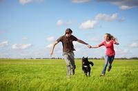 Hundehaftpflichtversicherung: Wenn es raus in die Sonne geht