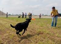 Neue Hundewiese in Poing eröffnet