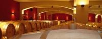 Die Zukunft des Weines liegt am Schwarzen Meer - Bulgarische Weine aus der Feder von Michel Rolland