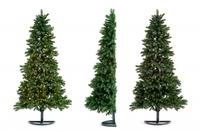 Halber Baum = runde Sache