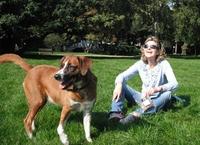 Allergie-erprobtes Futter für Hunde