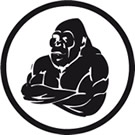 Yogamatte und Gymnastikball sorgen für Gesundheit und Wohlbefinden