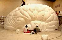 "Neue Ausstellung im Continium: ""Your sensational brain"""
