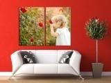 OnlineFotoservice.de baut Internetpräsenz für personalisierte Fotoprodukte strategisch aus