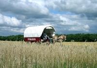 Wohnwagen mit 1PS - Der etwas andere Holland-Urlaub