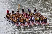 17. Dragon Boat Cup Düsseldorf am 16.06.2012
