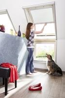 Das Dachgeschoss wird zur insektenfreien Zone