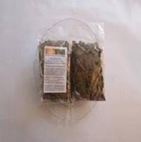 BENALU-TEE(TEA PARASITE)Scurulla atropurpurea- BESTE AUSLESE