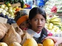 Ecuador - ganz nah am Paradies ...